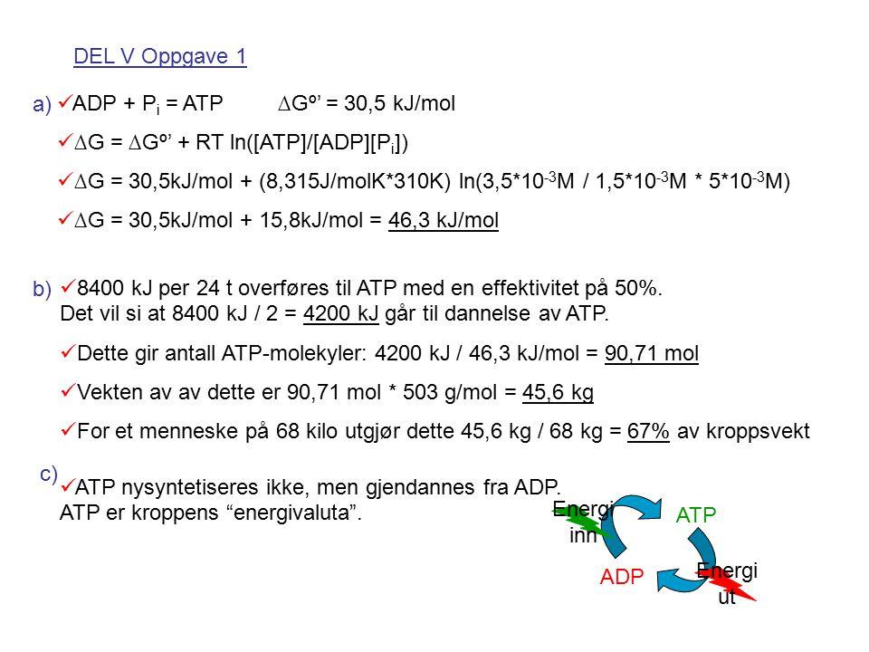 DEL V Oppgave 1 ADP + Pi = ATP ∆Gº' = 30,5 kJ/mol. ∆G = ∆Gº' + RT ln([ATP]/[ADP][Pi])
